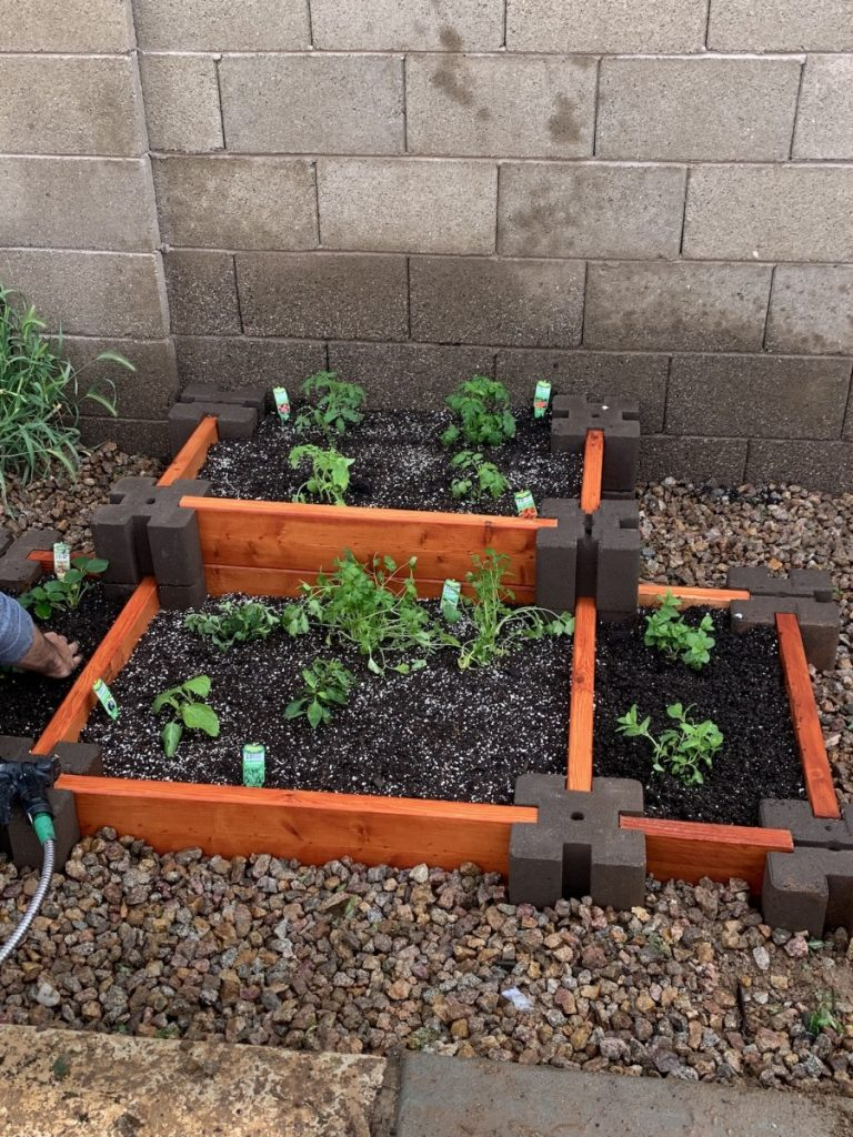 New vegetables and herbs garden Handyman Service Chandler by Az Express Services