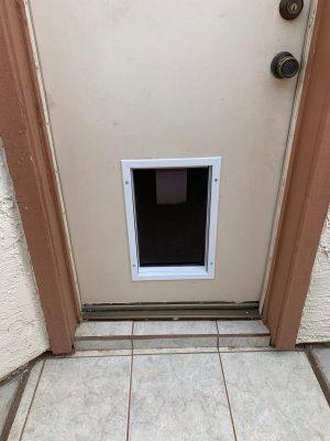 local-handyman-doggie-door-installation-dog-doors-lowes-large-doggie-door-doors-windows-installation